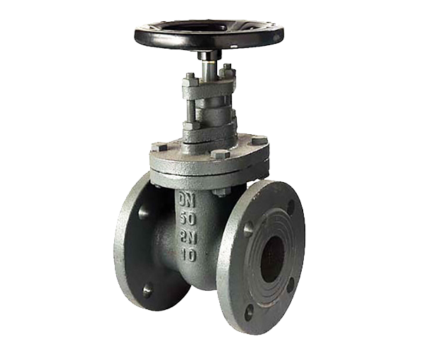 Definition of a Gate valve
